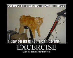Excercise demotivational by Stickbomber