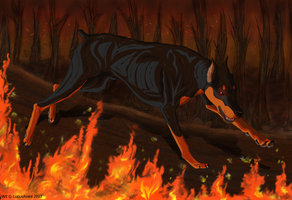 *Racing With Fire* Personal Art by LupusAvani