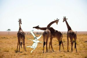 Excalibur and Giraffes by ILoveSpitfire