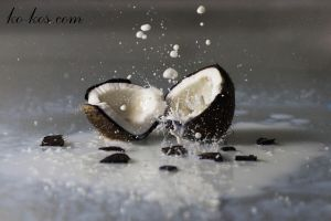 coconut by DenisGoncharov