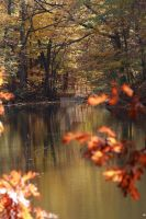 Fall in Indiana by rthustler