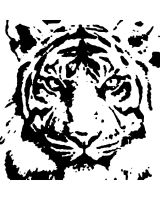 Tiger Stencil Retouched by xManuelx
