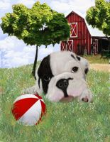 Bulldog puppy at the farm by muertosdesigns