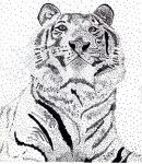 Stippled White Tiger by ThievingHopper