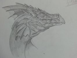 the fire drake from the north by Bolt-Head