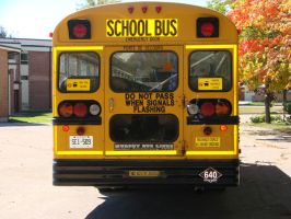 School Bus - Back by RosalineStock