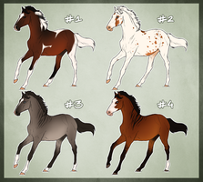 Horse Adoptable: Yearling Batch - SOLD OUT - by Cat-Orb-Shop