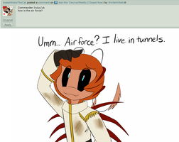 Ask the Devivs: Airforce? by SmilehKitteh