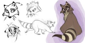Raccoon Designs by Clairictures