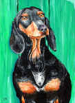 Dachshund in peace by chinchillacosmica