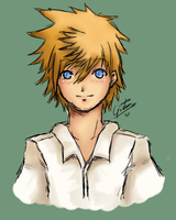 practice - roxas by GingkoGreen