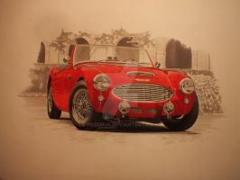 Austin Healey by przemus