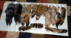 Tail Keychains - Fox, Raccoon, Coyote by kittykat01