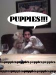Puppies!!! by PsychoInvader