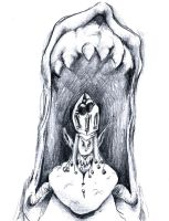 King of the sharp tongue by hyperartery