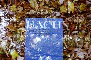 bach by Picture-Bandit