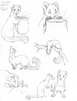 sketch page by hibbary