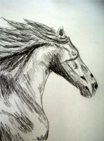 Horse sketch by Twimper