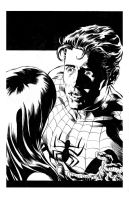 Mike Deodato Spiderman Inks by Alan-Gallo