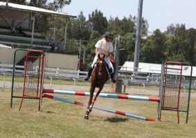 STOCK Showjumping 386 by aussiegal7