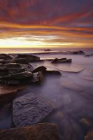 Turimetta Pinks by timbodon