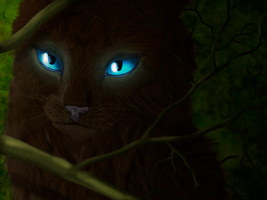 Hawkfrost by Speck--Of--Dust