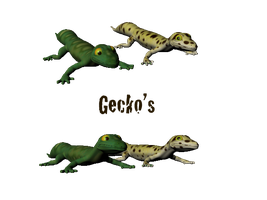 3D Geckos by elen89
