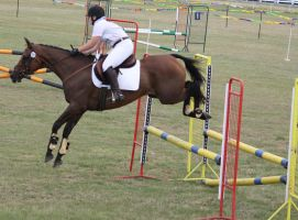 STOCK Showjumping 477 by aussiegal7