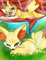Fennekin on Fennekin nom by zoruaboyrich