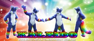 Fursuit - Kaleido by Vixen8387