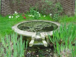 Rustic pond by Ommadawn