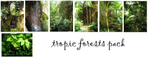 tropic forest pack by syccas-stock