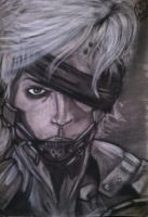 Raiden Rising by The-Evil-Pacman