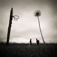 of basketball and other demons by Gabrenas