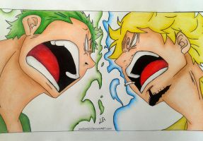 Roronoa Zoro and Sanji by niinean