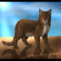 Leafstar of SkyClan by xxMoonwish