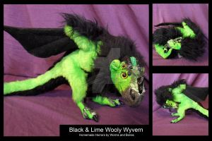 Black and Lime Wooly Wyvern by WormsandBones
