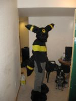 Umbreon Partial Halloween 2010 by Leap207