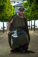 How To Train Your Dragon Cosplay at MCM May 2015 by TMProjection