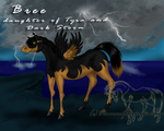 Bree - Contest Entry by horsewolf