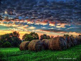 Hayrolls At Sunrise by jim88bro