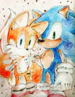 Sonic and tails by chippuuuu
