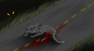 Cinderpaws accident by NonsensicalLogic