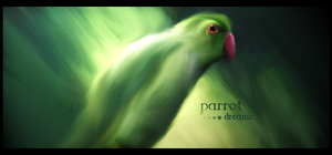 Parrot Dreamz Siggeh by pulse36