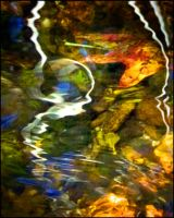 Spirit of the River by existentialdefiance