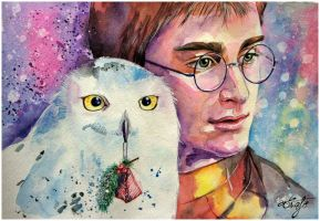 Harry Potter by TioUsui