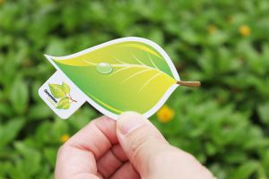 Leaf business card by Lemongraphic
