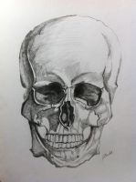 Skull by carlyscanvas