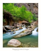 Flowing through Zion by anonymous66