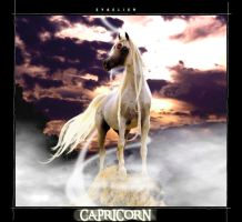 The Lady Capricorn by evaelien
